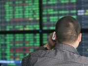 Vietnamese shares slide on both markets