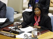 UN official shares peacekeeping experience in Vietnam