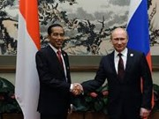 Russia, Indonesia sign defence cooperation agreement