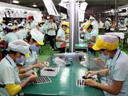 ILO pledges to support Vietnam in TPP