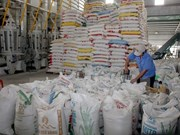 Rice exports in Q2 fall