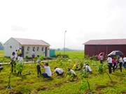 Activities staged for a greener Vietnam