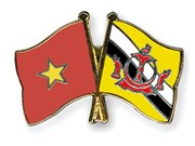 Vietnam, Brunei have expanded defence ties