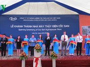 First foreign-funded power project in North Vietnam inaugurated