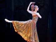 World-class ballet artists to perform in Hanoi