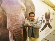 "WWF launches ""Stop Buying Ivory"" campaign in Thailand"