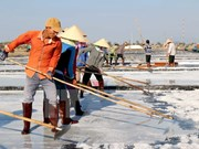 Embattled salt farmers in Quang Ngai Province aided