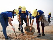 Biggest ever beach cleanup launched