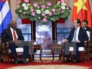 Vietnam, Cuba should expand economic cooperation, says President