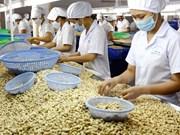Cashew industry to establish fund