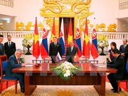 Vietnamese, Slovakian PMs seek measures for bilateral ties