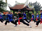 First World martial art championship takes place in HCM City