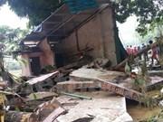 Typhoons caused 297 million USD losses to Vietnam