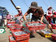 Tests on seafood in central provinces to be announced early next month