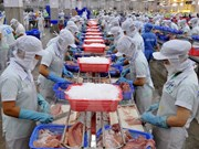 Bac Lieu earns 288 million USD from seafood exports