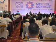 Mekong Connect-CEO Forum 2016: Seeking chances in challenges