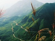 Hoang Lien Son mountain pass becomes national destination