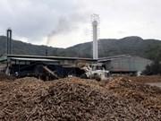 Export tax on sliced cassava cut