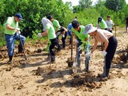 Vietnam, EU share expertise in coping with climate change