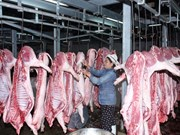 European meat exports to Vietnam increase