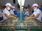 Vietnam, Italy reinforce trade ties