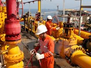 Gas distribution system inaugurated in Thai Binh province