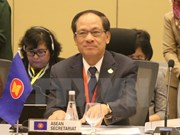 ASEAN thrives on its diversity, says Secretary General