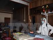 Dengue fever cases increase suddenly in Hanoi