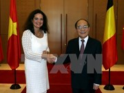 Vietnam, Belgium boost co-operation through parliamentary diplomacy