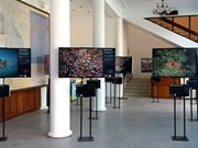 Climate change art in the spotlight