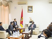 Vietnamese, Mozambican parliaments cement ties