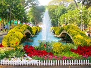 Spring Flower Festival colours Ho Chi Minh City
