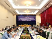Laos review 10-year cooperation with Vietnam to develop border areas