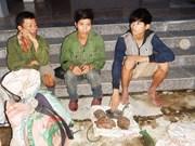 US willing to help Vietnam combat wildlife trafficking