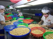 Vietnam continues enjoying trade surplus with Canada