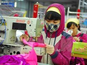 Binh Duong: More FDI poured into garment sector