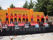 Vietnamese expats in RoK enjoy cultural-sport festival