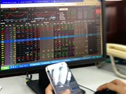 VN Index rises after drop on June 24