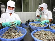 Australia to intensify inspection of imported seafood from VN