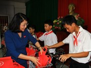 Vice President grants scholarships to Dong Thap children