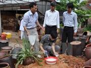 Dengue fever incidence spirals in Khanh Hoa