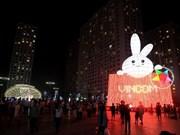 Bunny lantern sets Vietnamese record