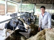 Effective animal husbandry policies needed