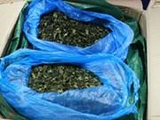 Over 82kg of suspected drug-linked leaves seized