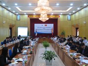 Vietnam, RoK review partnerships, look to spur economic relations