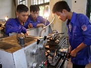 Mekong Delta develops human resources