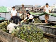 Binh Duong province declares communal-level Zika epidemic