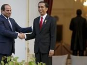 Indonesia, Egypt strengthen anti-terrorism cooperation