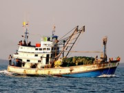 Thai boats arrested for illegally fishing in Vietnam's waters
