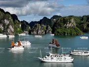 Japan helps Quang Ninh treat wastewater